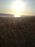 Sunrise-on-Musgrave-Harbour-Beach,-Newfoundland-5.jpg