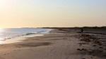 Morning-walk-on-Musgrave-Harbour-beach-4.jpg