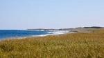 Musgrave-Harbour-beach-3.jpg